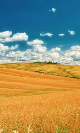 17969 скачать обои Пейзаж, Поля, Небо, Облака - заставки и картинки бесплатно