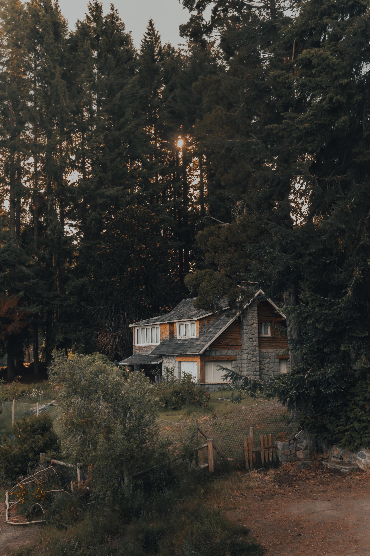 135772 fond d'écran 480x800 sur votre téléphone gratuitement, téléchargez des images Nature, Arbres, Forêt, Loger, Maison 480x800 sur votre mobile