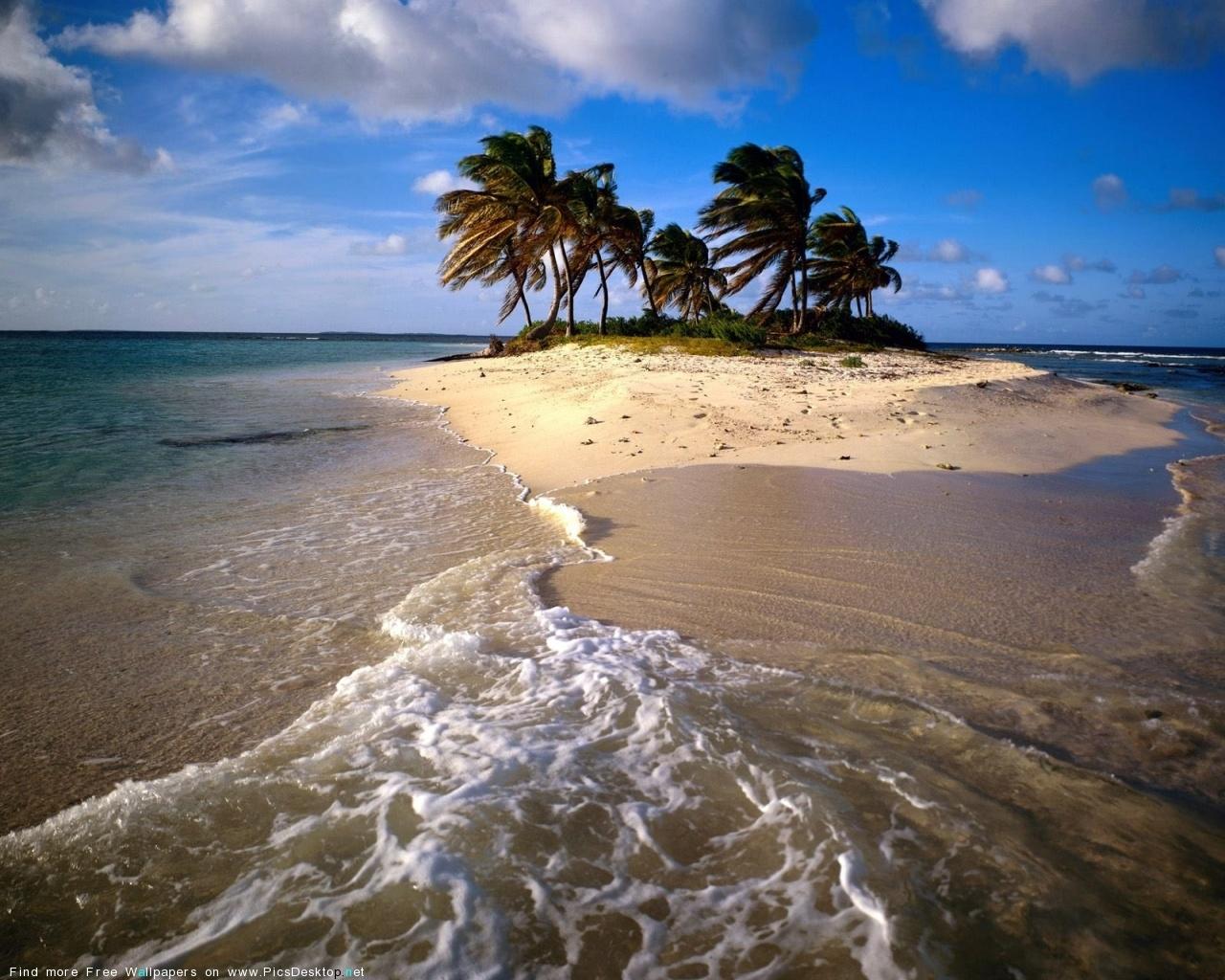 3341 скачать обои Пейзаж, Вода, Деревья, Небо, Море, Пляж - заставки и картинки бесплатно