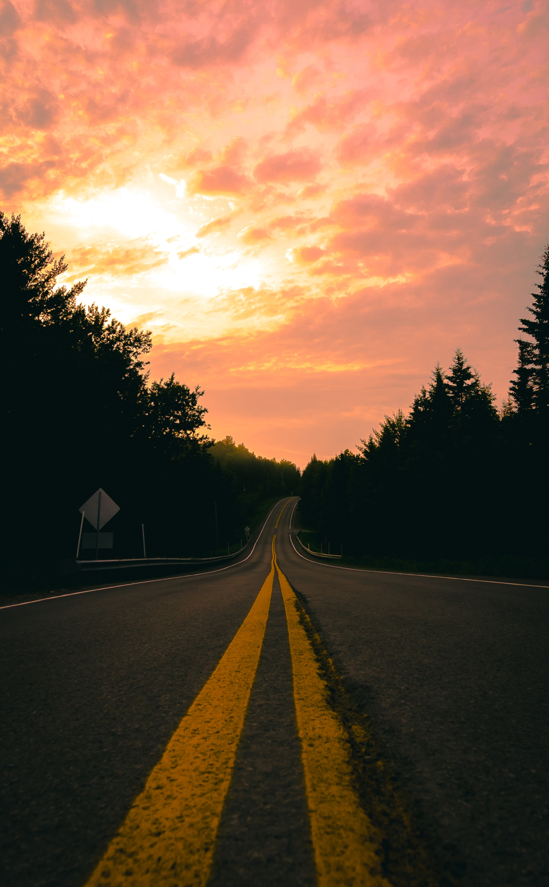 50398 Screensavers and Wallpapers Markup for phone. Download Nature, Sunset, Road, Turn, Markup, Forest pictures for free