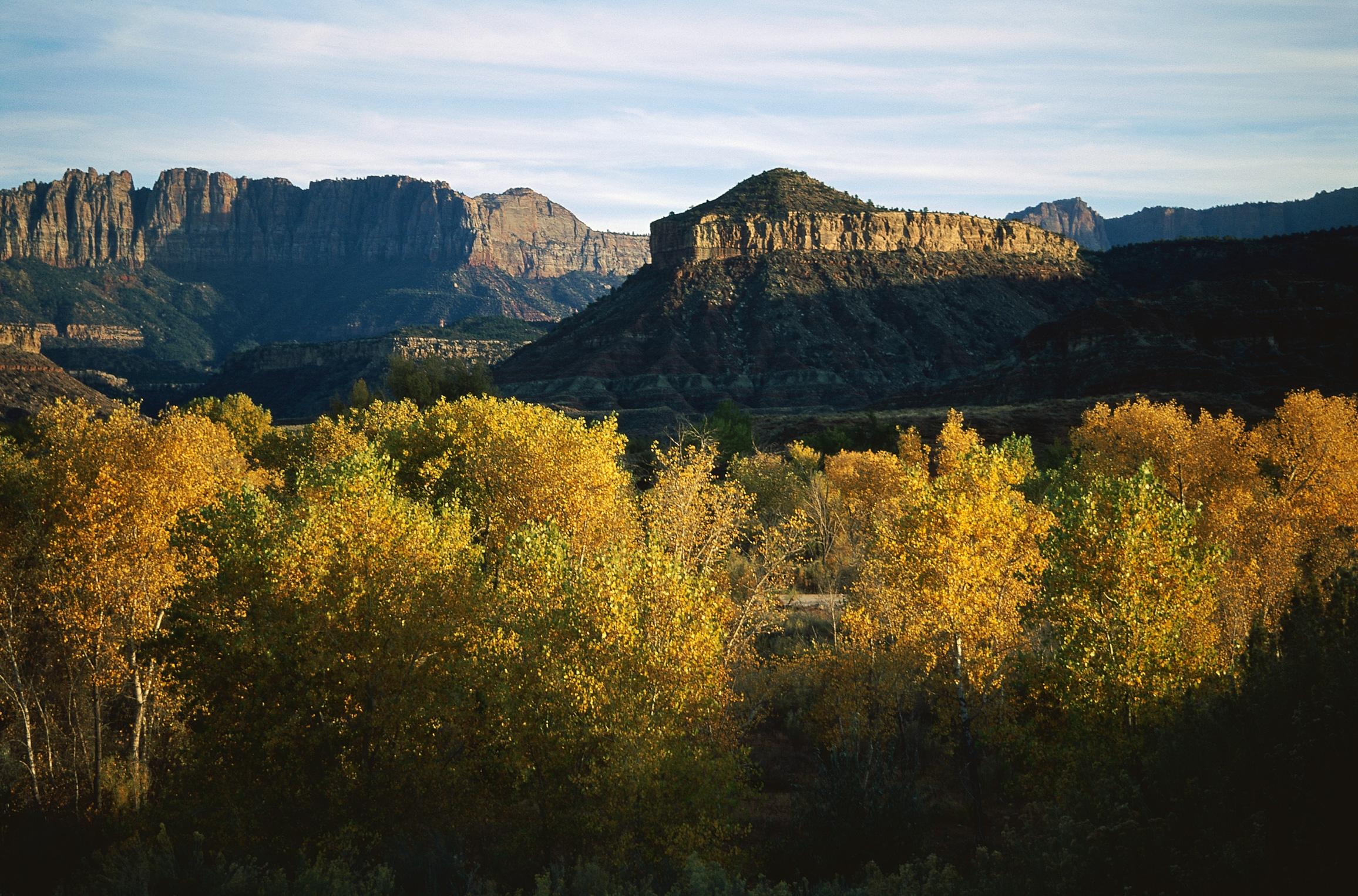 151196 descargar fondo de pantalla Naturaleza, Árboles, Otoño, Vegetación, Noche, Sombra, Montañas: protectores de pantalla e imágenes gratis