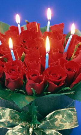 471 download wallpaper Holidays, Flowers, Roses screensavers and pictures for free