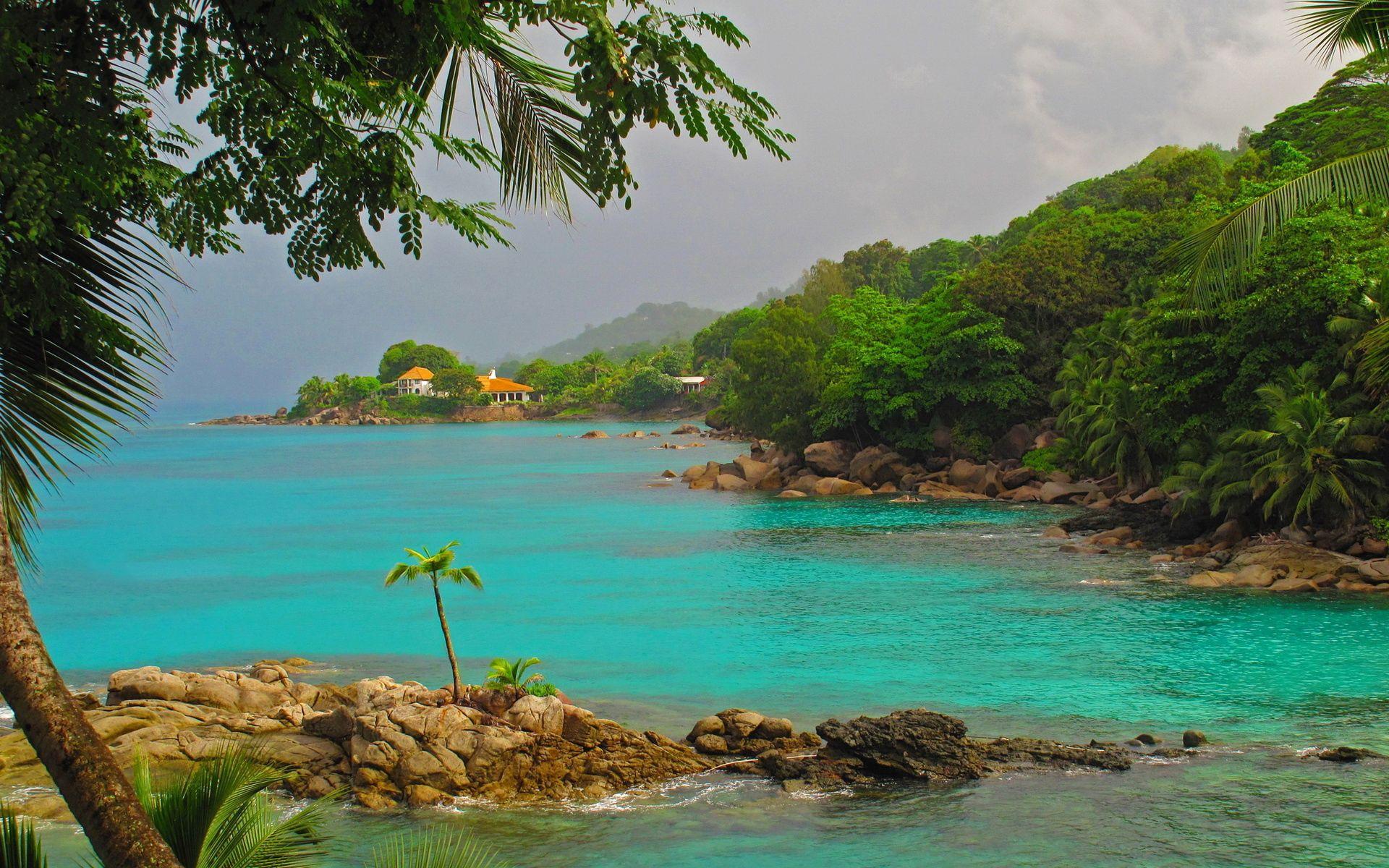 93854 скачать обои Природа, Море, Каменистый Берег, Пейзаж, Пальмы - заставки и картинки бесплатно
