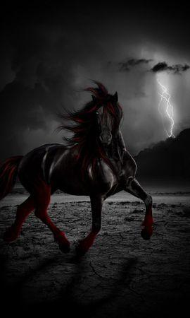 35785 baixar papel de parede Animais, Fantasia, Cavalos - protetores de tela e imagens gratuitamente
