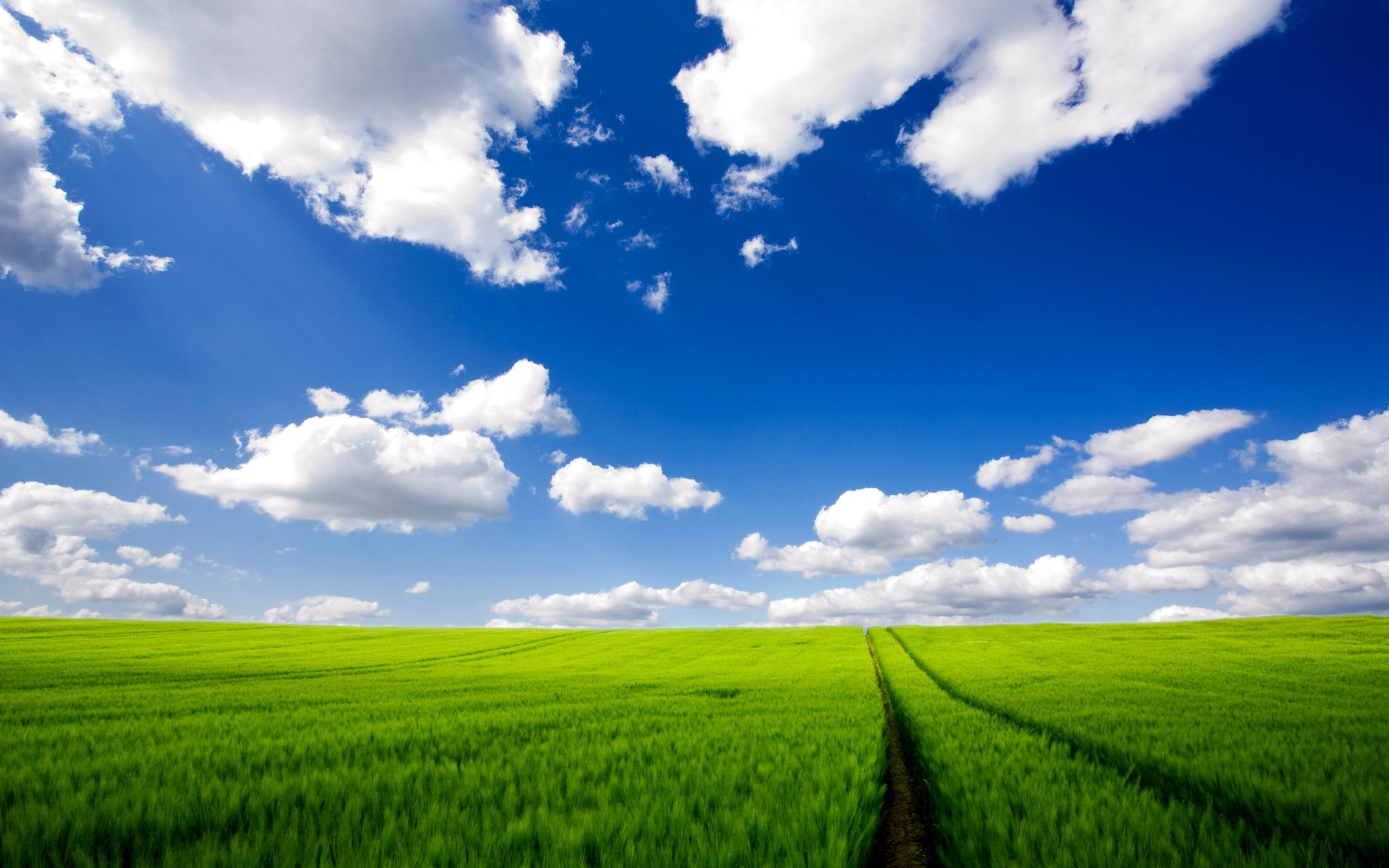 5092 скачать обои Пейзаж, Трава, Небо, Дороги - заставки и картинки бесплатно