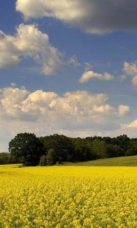 5376 скачать обои Пейзаж, Поля, Небо - заставки и картинки бесплатно