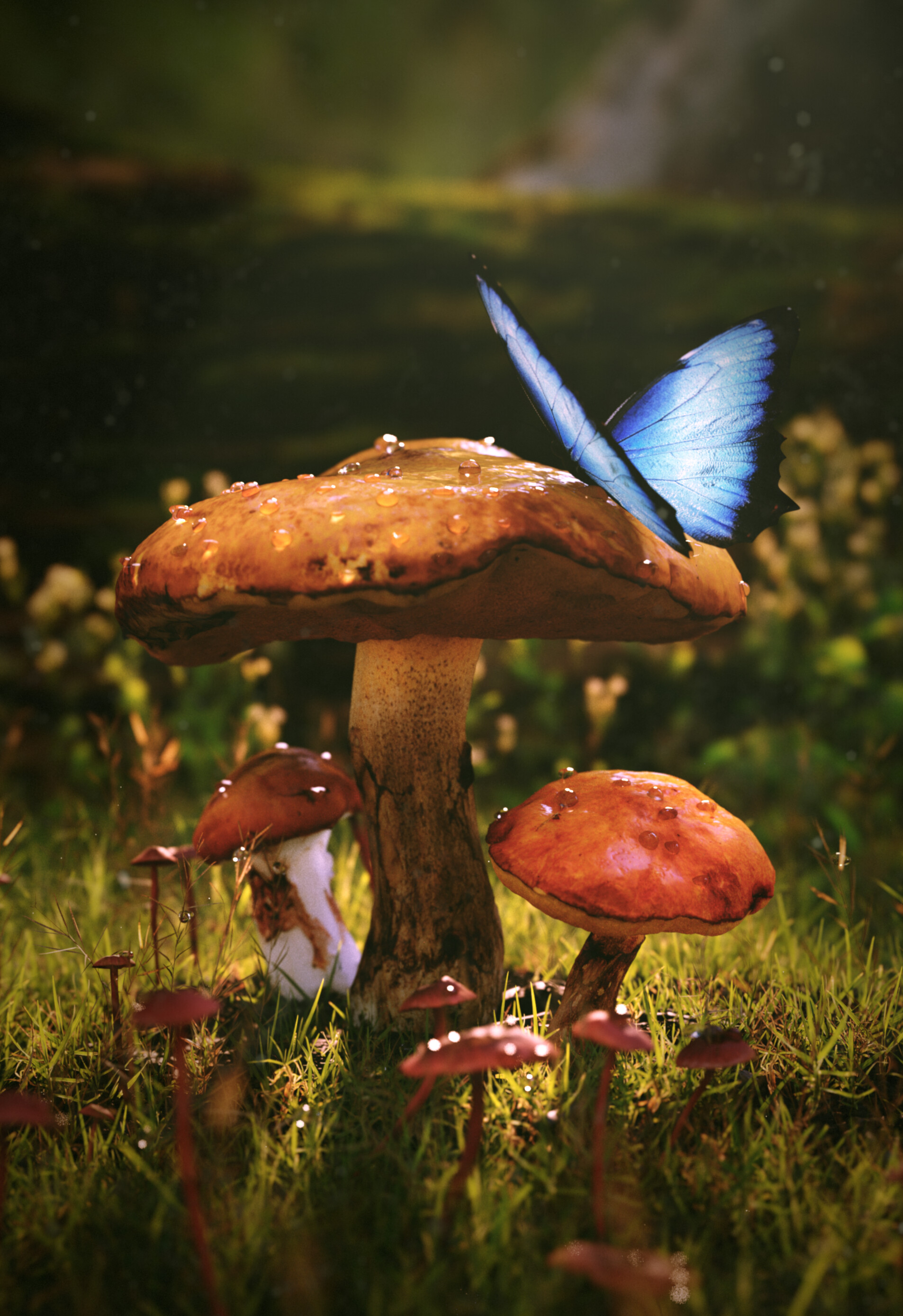 80665 Screensavers and Wallpapers Mashrooms for phone. Download Grass, Mashrooms, 3D, Wet, Butterfly, Dew pictures for free