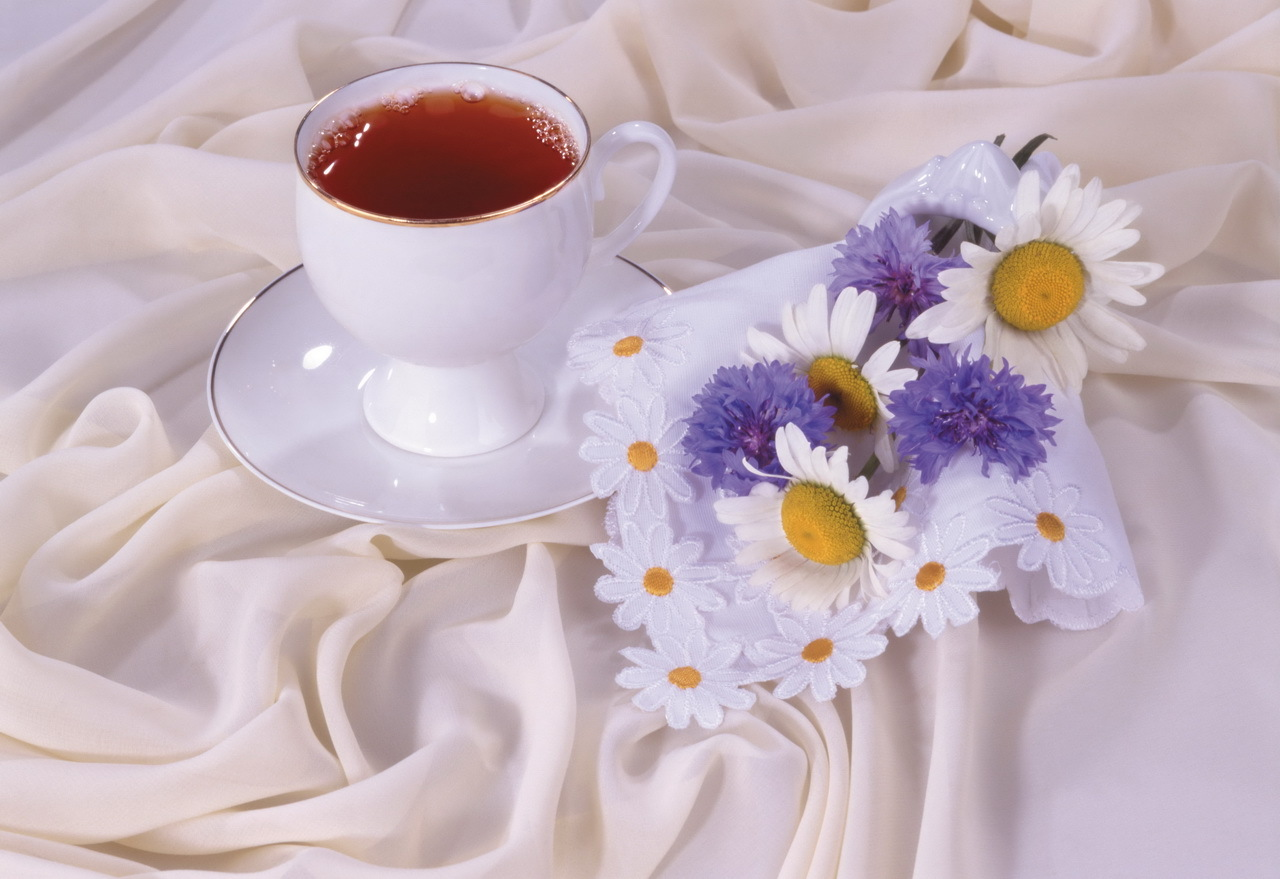 13731 download wallpaper Flowers, Food, Camomile, Drinks screensavers and pictures for free