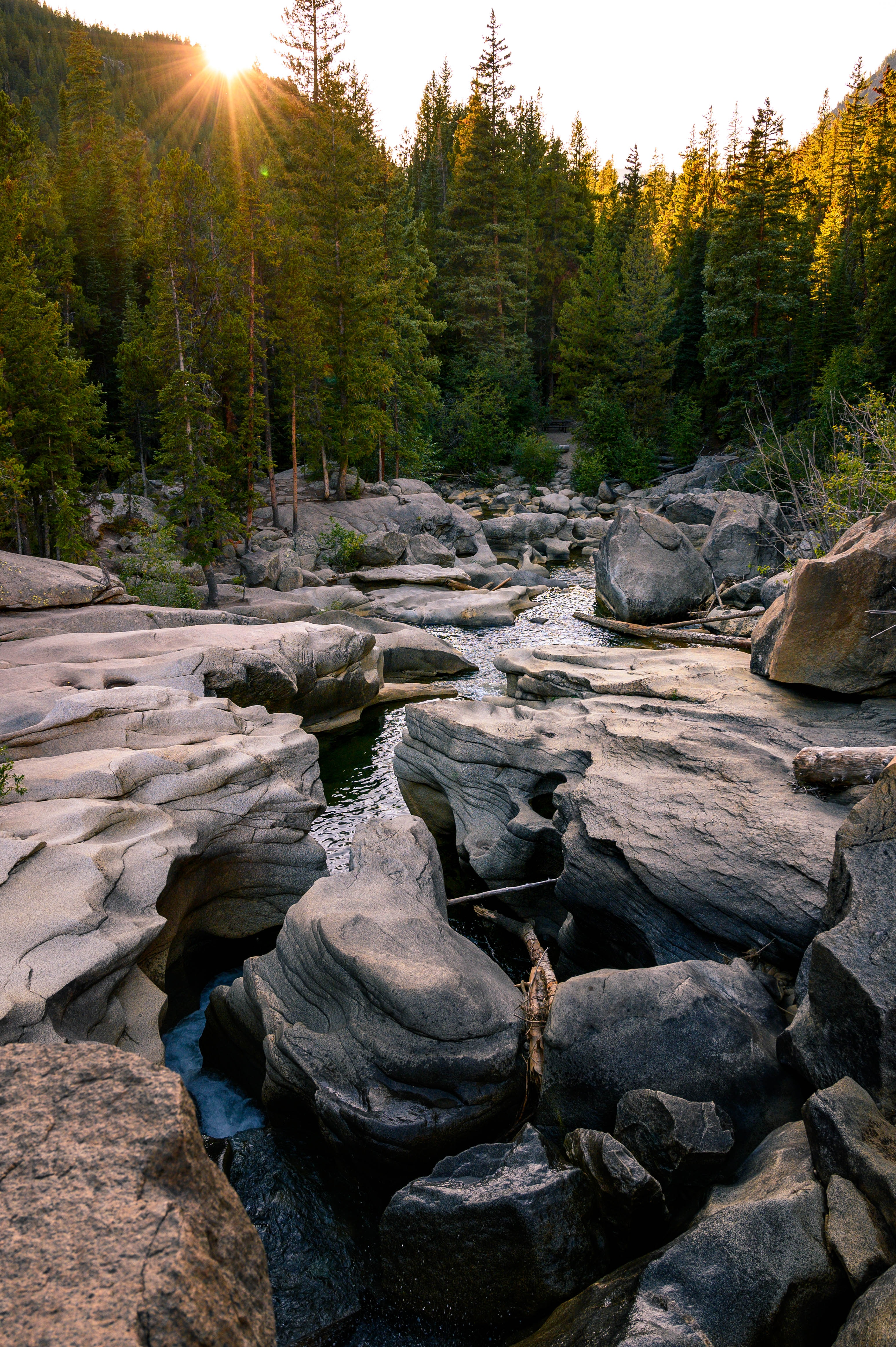 54131 download wallpaper Rivers, Stones, Forest, Nature, Landscape screensavers and pictures for free