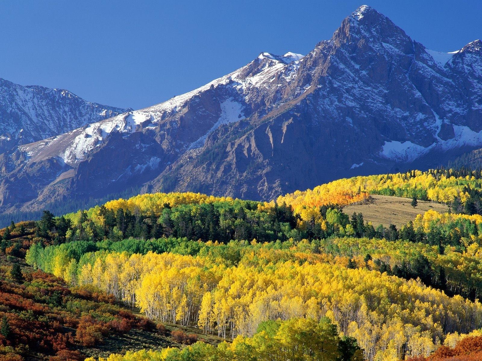4260 скачать обои Пейзаж, Деревья, Горы, Осень - заставки и картинки бесплатно