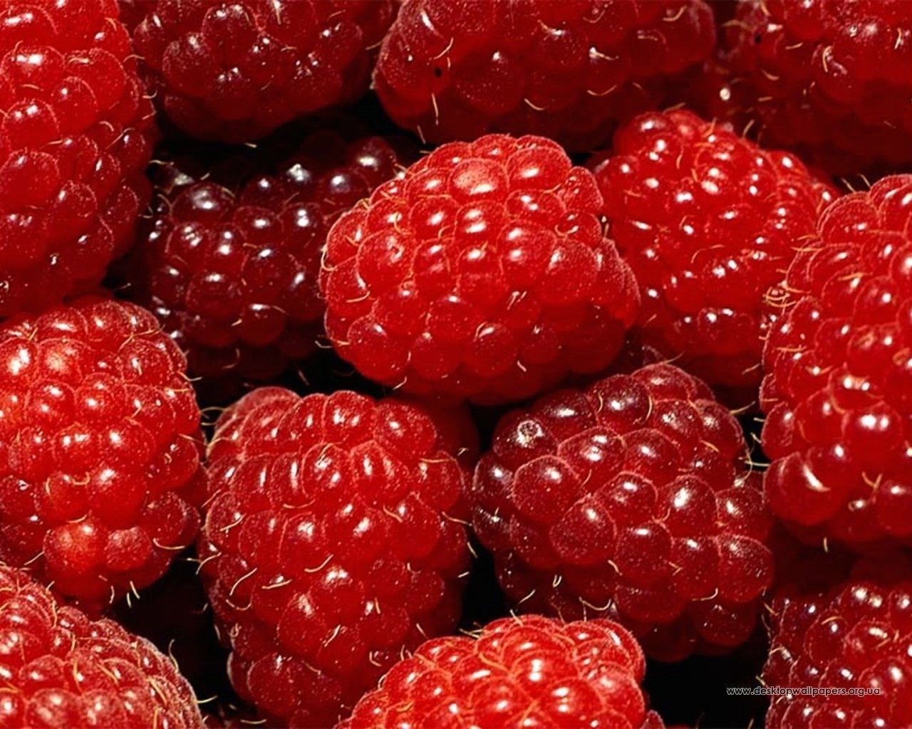 8529 download wallpaper Food, Background, Raspberry, Berries screensavers and pictures for free