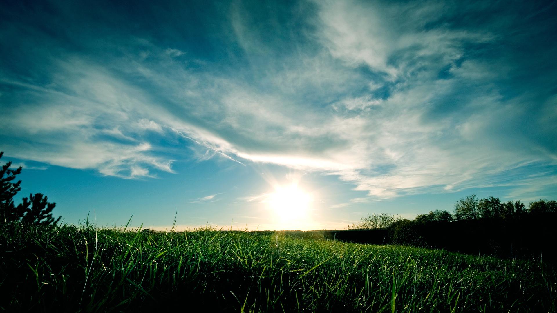 10731 скачать обои Пейзаж, Трава, Небо - заставки и картинки бесплатно