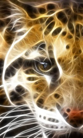 8342 download wallpaper Animals, Leopards screensavers and pictures for free