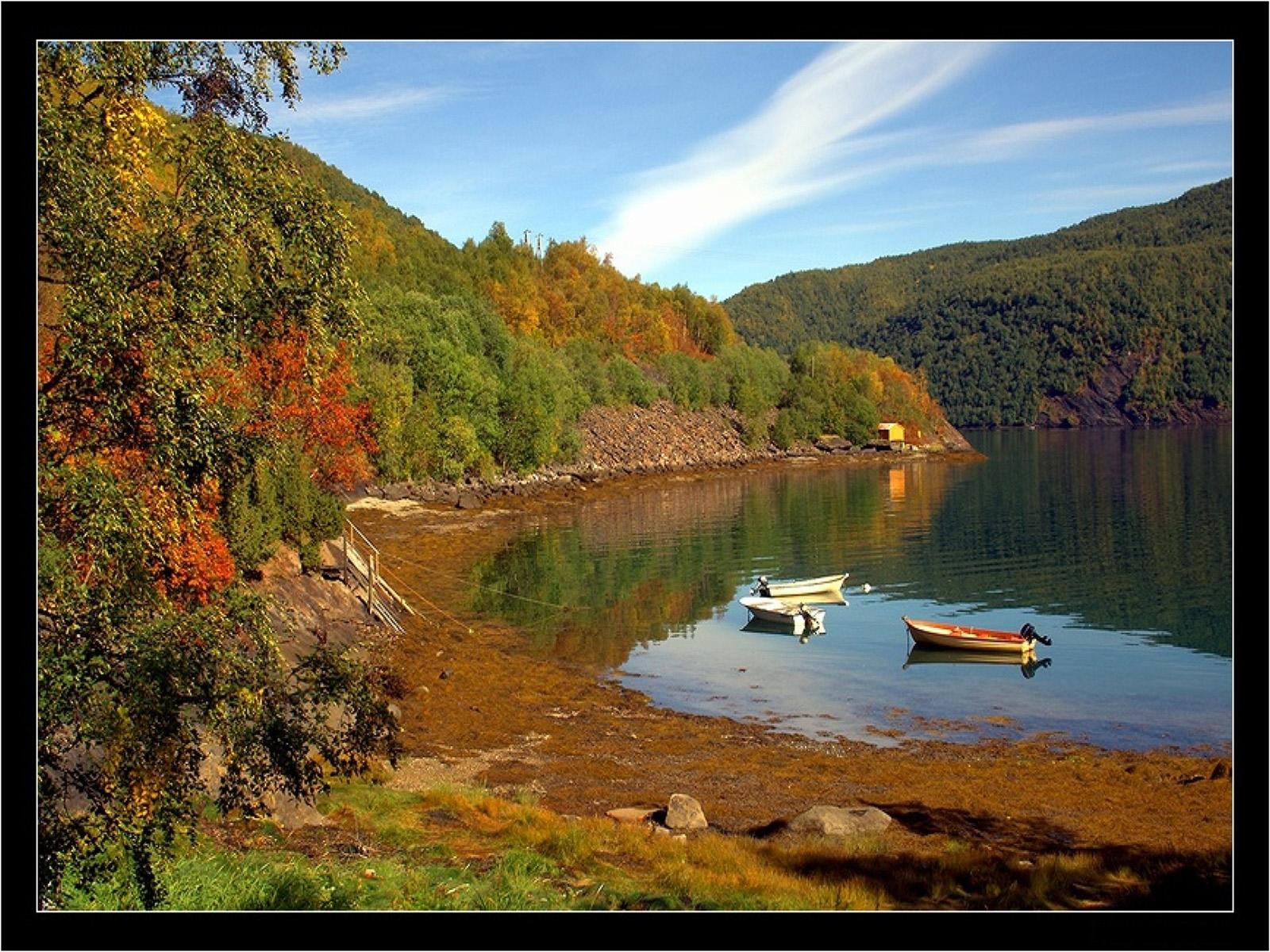 2963 скачать обои Пейзаж, Вода, Деревья, Лодки - заставки и картинки бесплатно