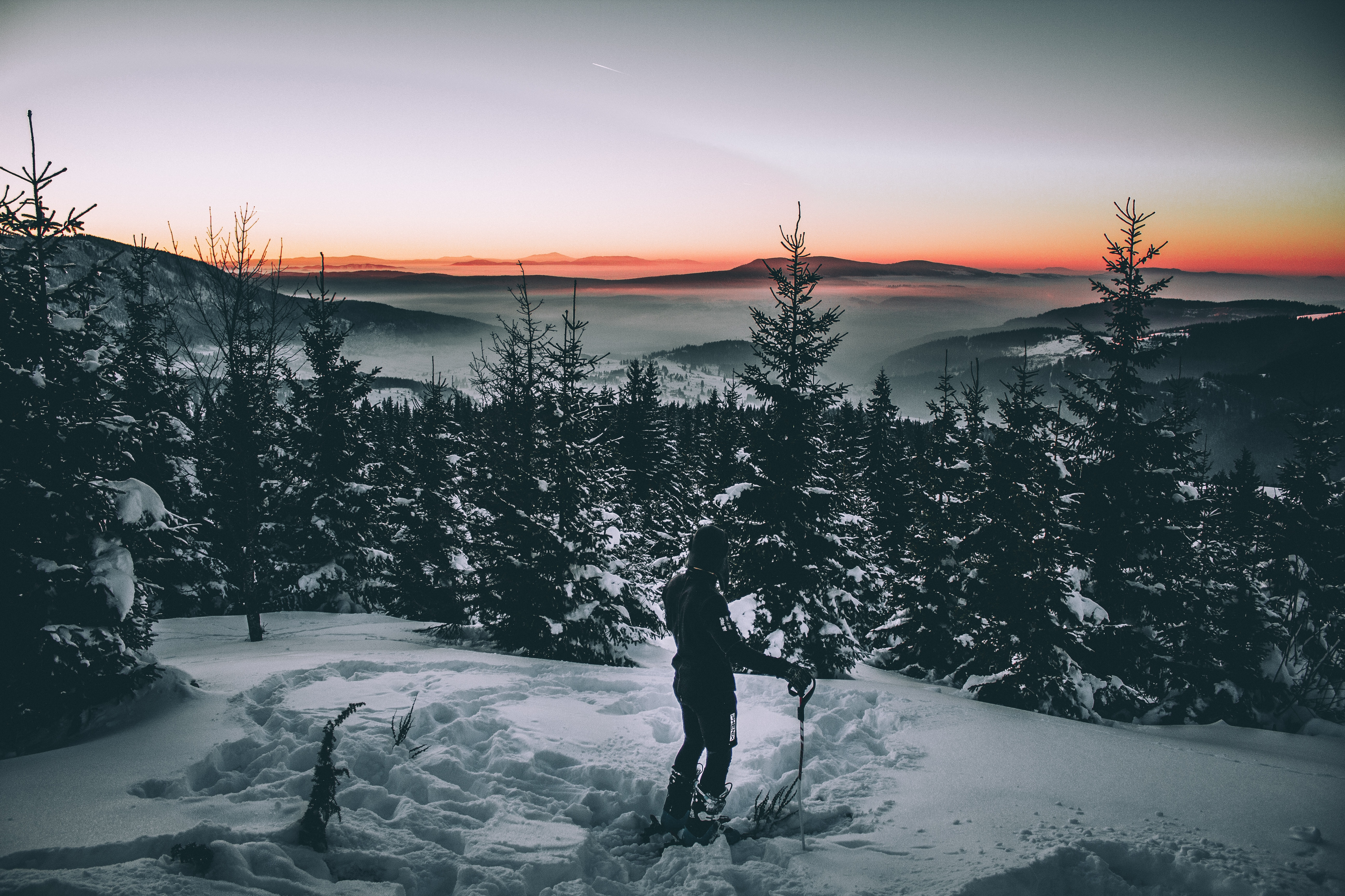 105668 download wallpaper Snow, Winter, Trees, Dark, Skier screensavers and pictures for free