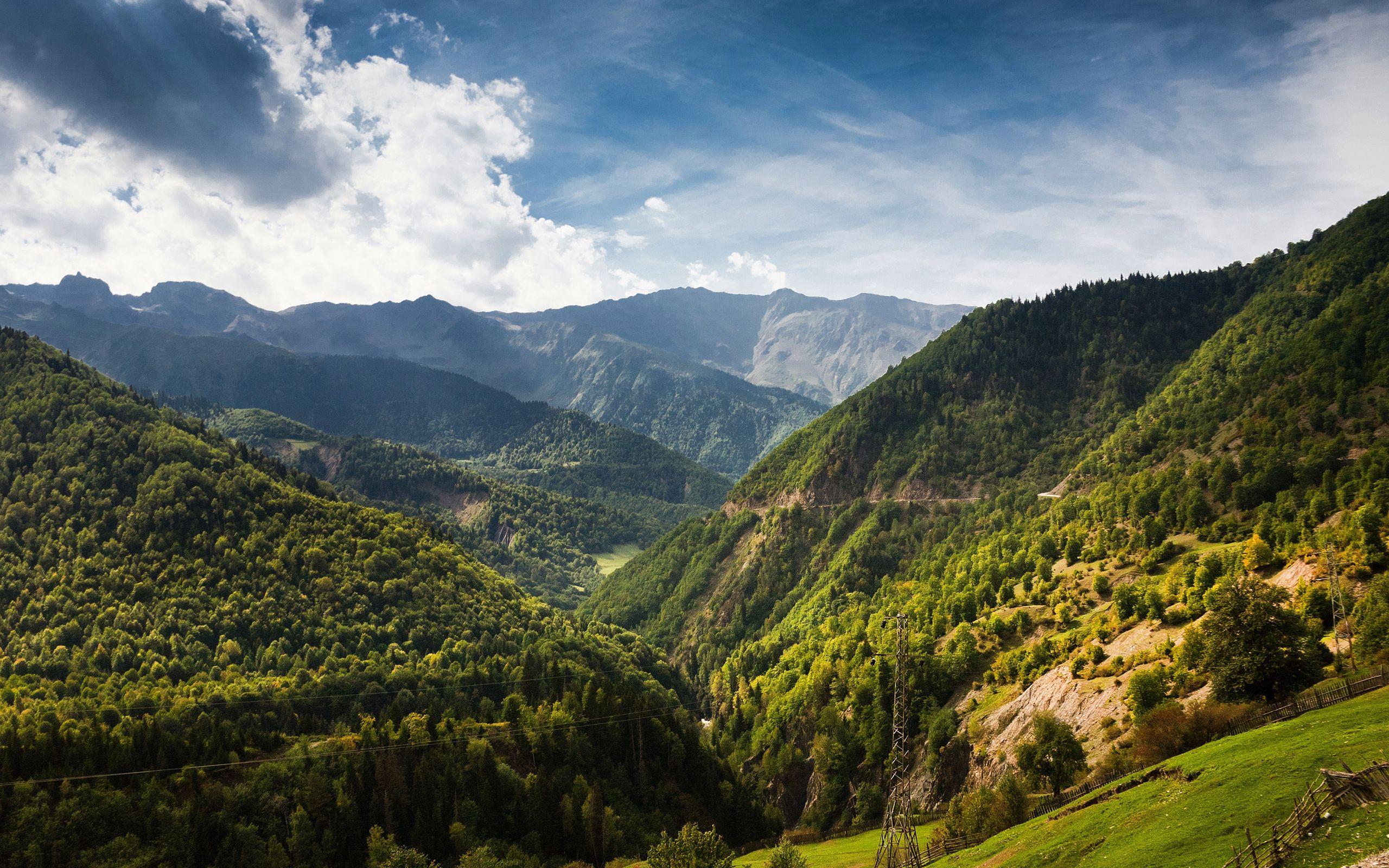 88856 скачать обои Горы, Природа, Деревья, Высота, Вышка, Башня, Провода, Леса - заставки и картинки бесплатно