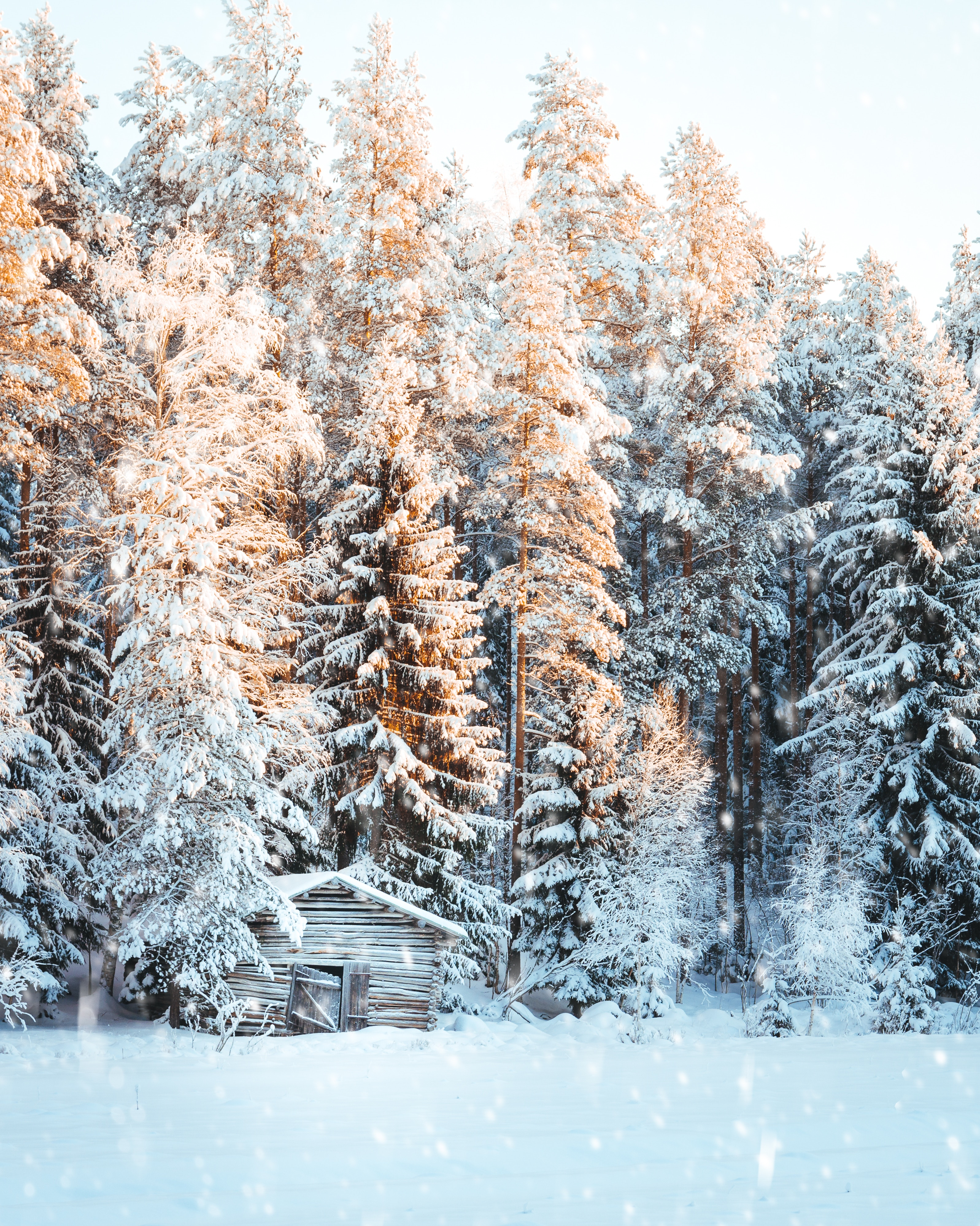 68990 скачать обои Зима, Природа, Деревья, Снег, Свет, Домик, Снегопад - заставки и картинки бесплатно