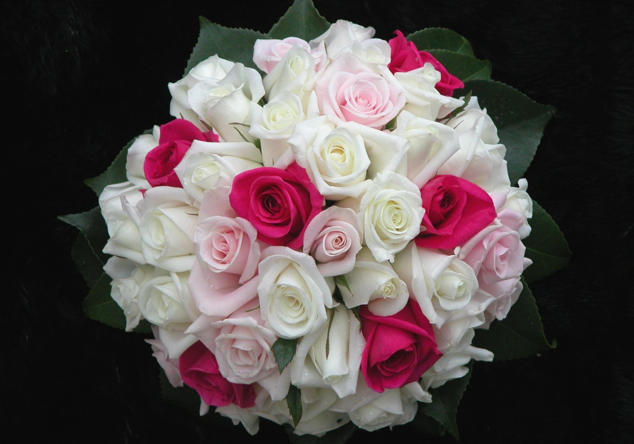 114408 скачать обои Букет, Розы, Розовые, Цветы, Листья, Оформление, Красиво - заставки и картинки бесплатно