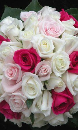 114408 скачать Белые обои на телефон бесплатно, Цветы, Розовые, Букет, Листья, Оформление, Красиво, Розы Белые картинки и заставки на мобильный