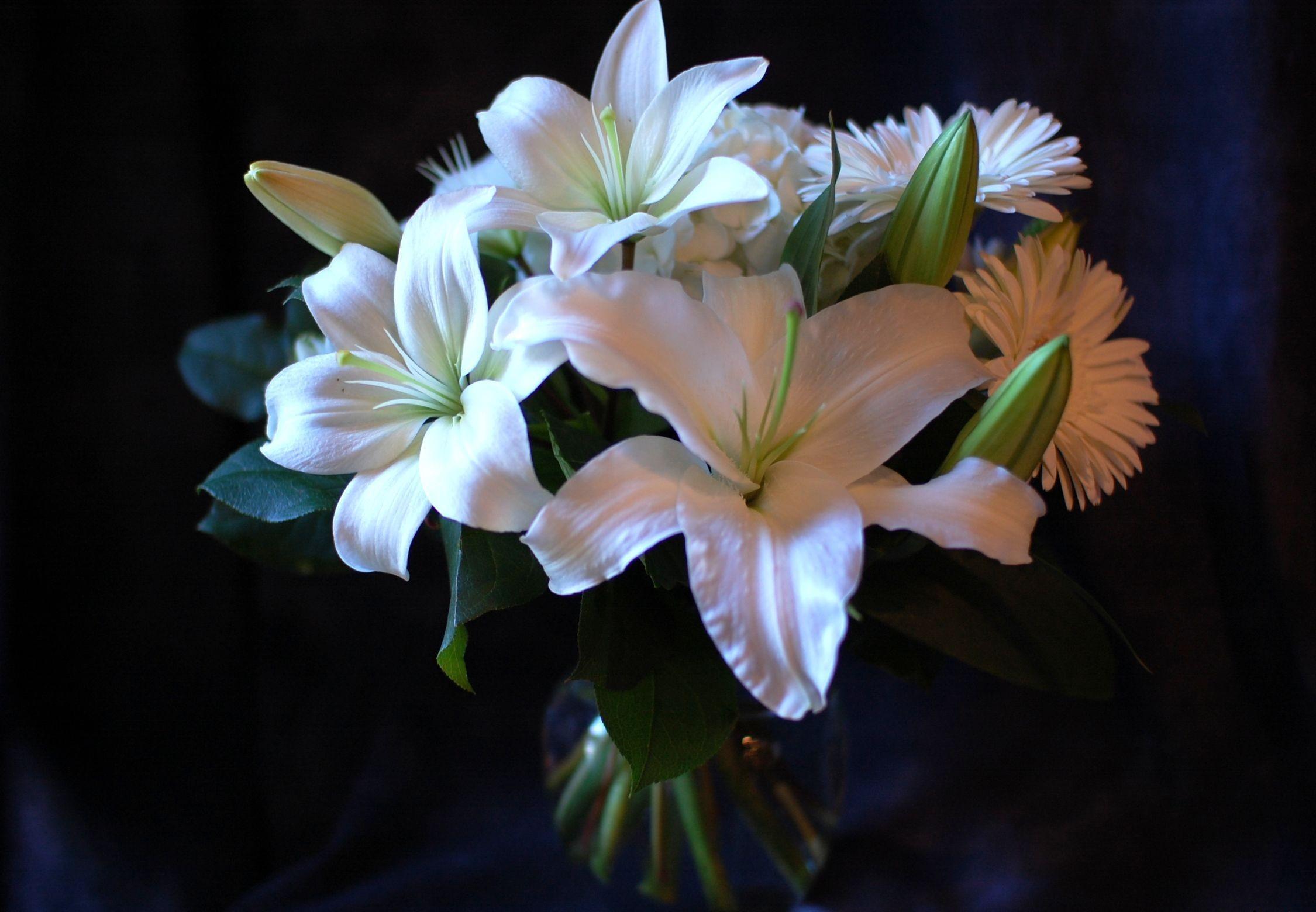 104598 télécharger le fond d'écran Fleurs, Lilies, Bouquet, Gerberas - économiseurs d'écran et images gratuitement