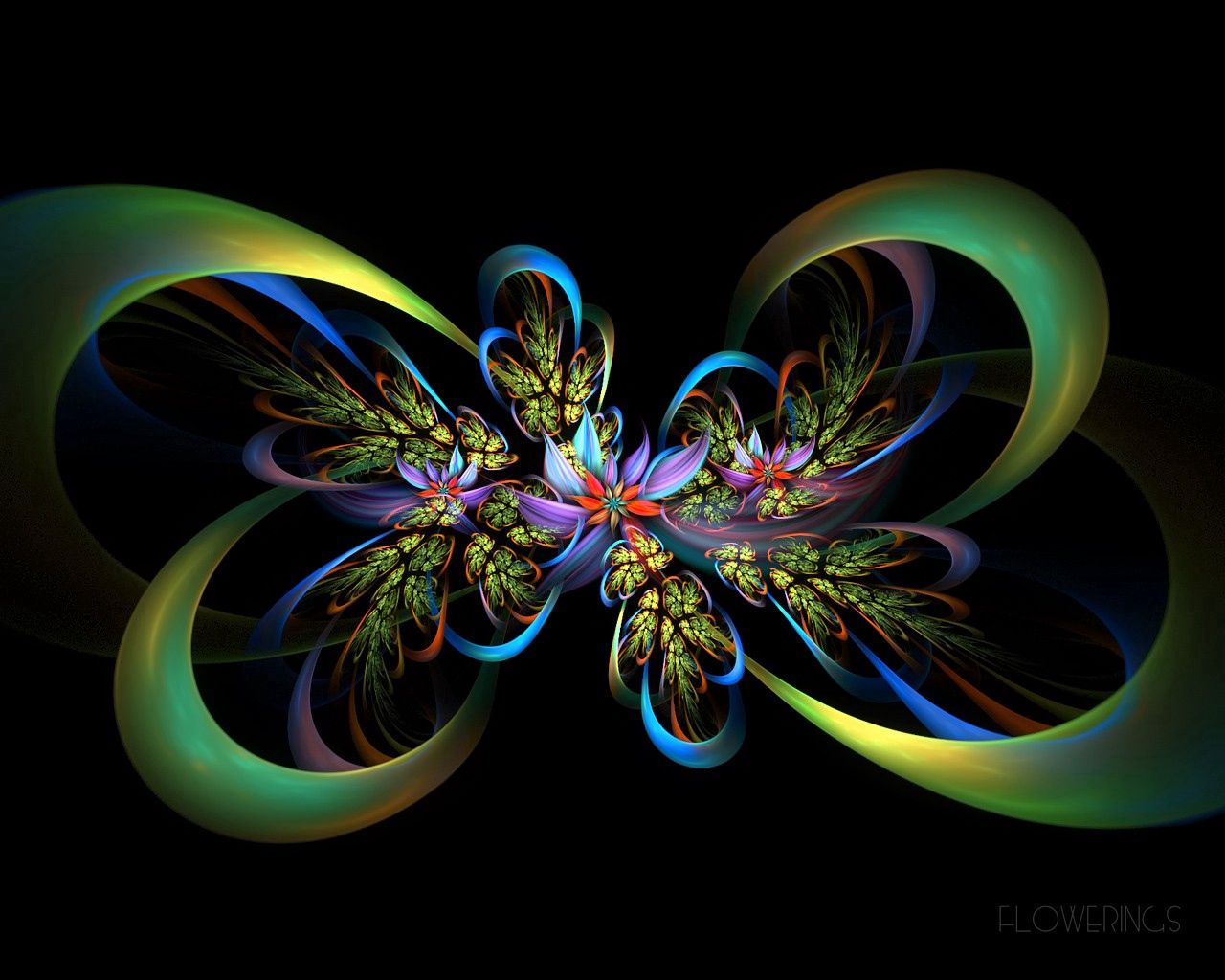 136139 download wallpaper Abstract, Fractal, Lines, Flowers, Patterns screensavers and pictures for free