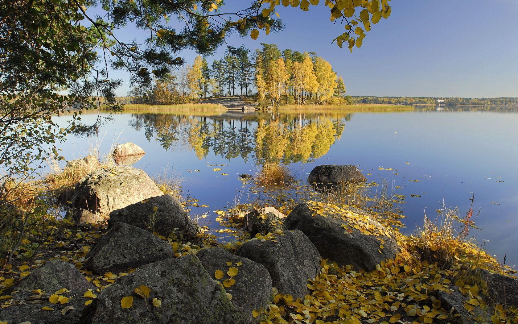 144502 скачать обои Осень, Камни, Природа, Деревья, Листья, Березы, Озеро, Берега, Островок - заставки и картинки бесплатно