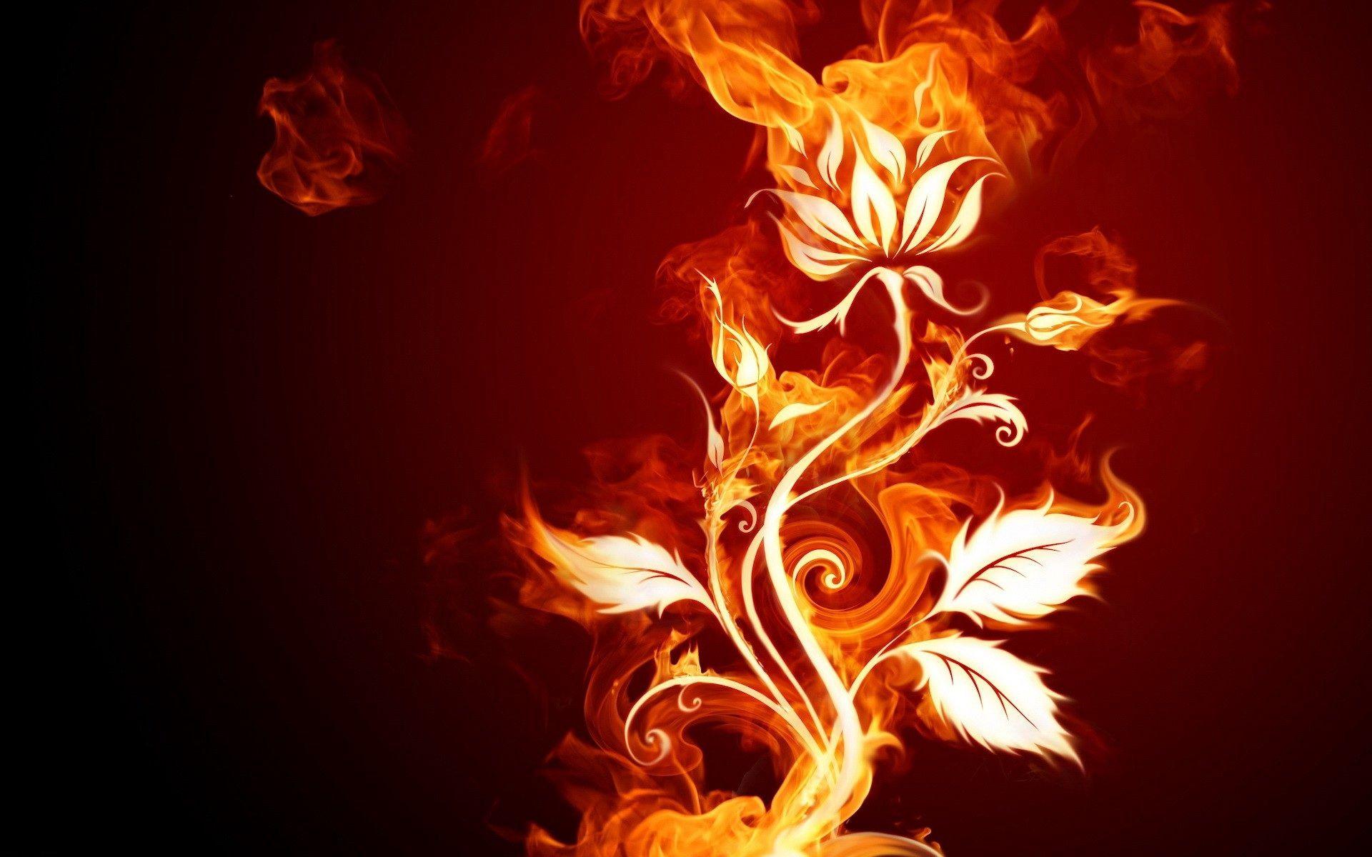 78601 скачать обои Узоры, Огонь, Абстракция, Фон, Пламя, Роза - заставки и картинки бесплатно