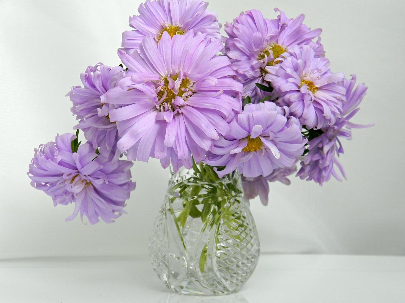 Скачать картинку Букеты, Цветы, Растения в телефон бесплатно.