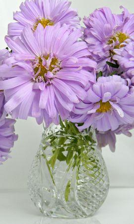 26207 скачать обои Растения, Цветы, Букеты - заставки и картинки бесплатно