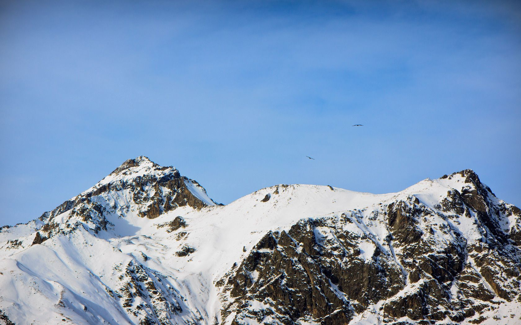 152771 download wallpaper Nature, Caucasus, Snow, Dombay, Dombai, Vertex, Top, Height, Mountains, Birds screensavers and pictures for free