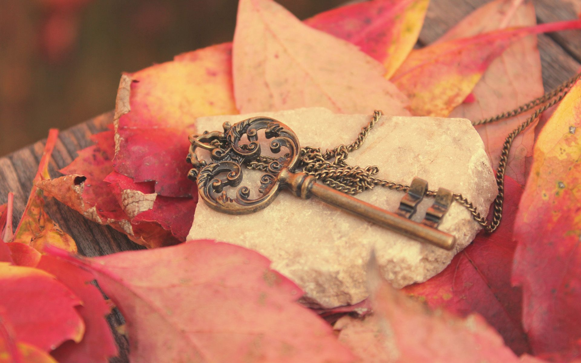 87565 download wallpaper Miscellanea, Miscellaneous, Key, Metal, Leaves, Autumn, Chain, Rock, Stone, Board screensavers and pictures for free