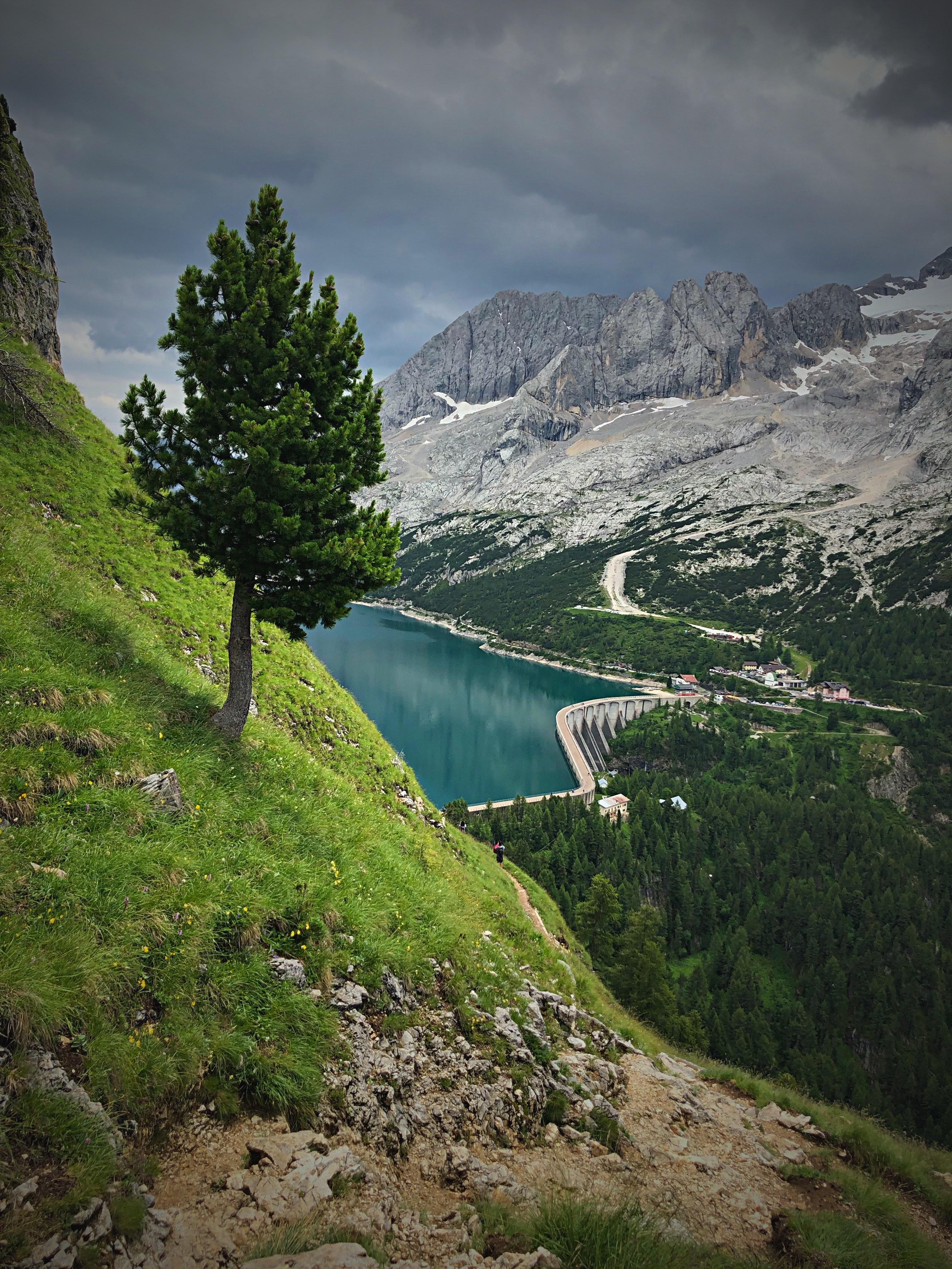140690 télécharger le fond d'écran Nature, Arbres, Lac, Endiguer, Barrage, Montagnes, Paysage - économiseurs d'écran et images gratuitement