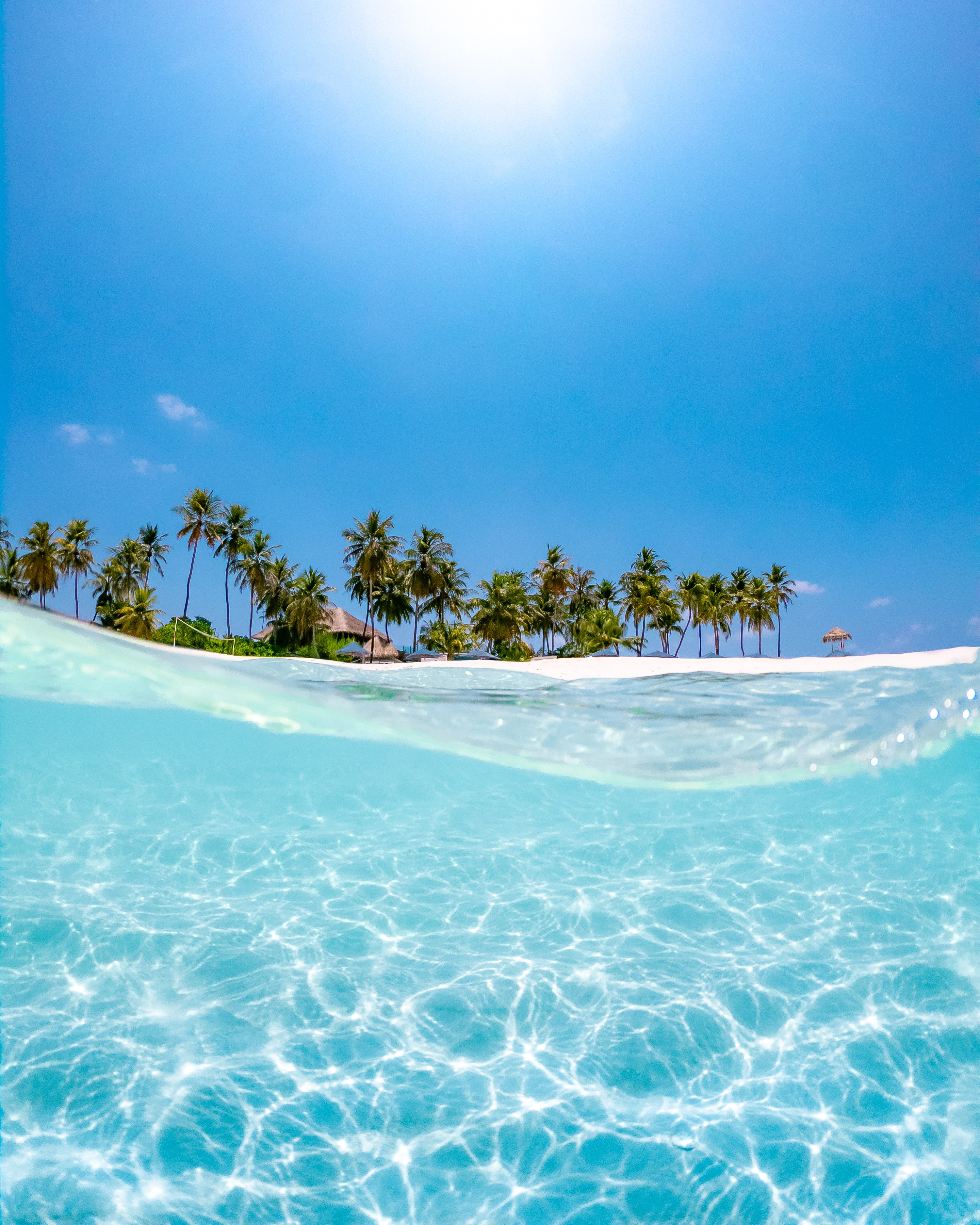64221 скачать обои Море, Солнце, Пляж, Пальмы, Природа, Вода, Голубой, Волна - заставки и картинки бесплатно