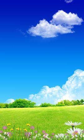 12954 скачать обои Пейзаж, Трава, Фон, Небо, Облака - заставки и картинки бесплатно