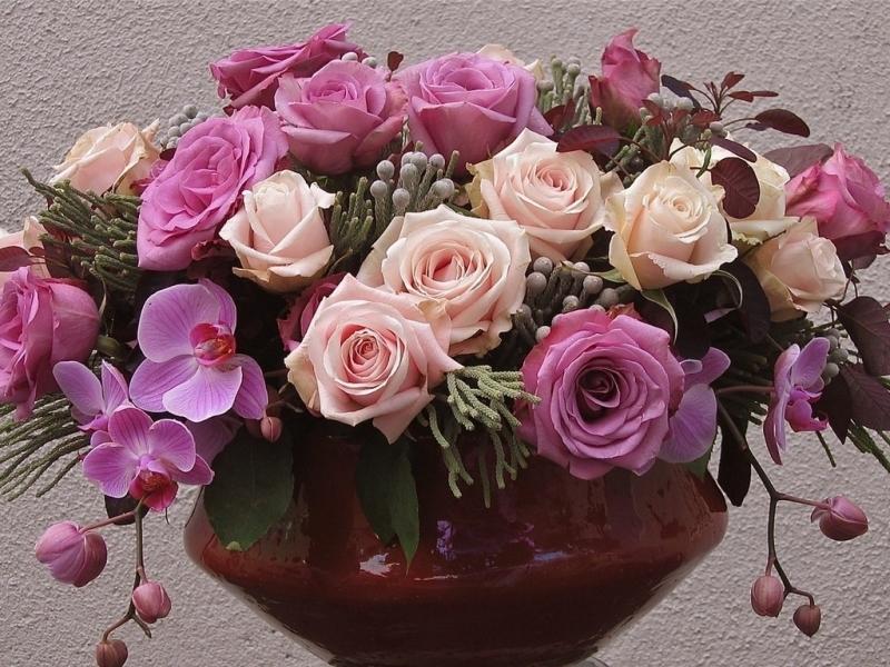 40626 télécharger le fond d'écran Plantes, Fleurs, Bouquets - économiseurs d'écran et images gratuitement