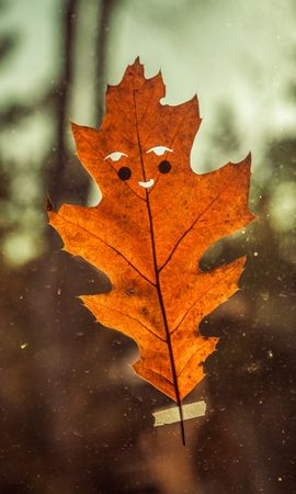 50716 download wallpaper Miscellanea, Miscellaneous, Sheet, Leaf, Funny, Autumn, Smile screensavers and pictures for free