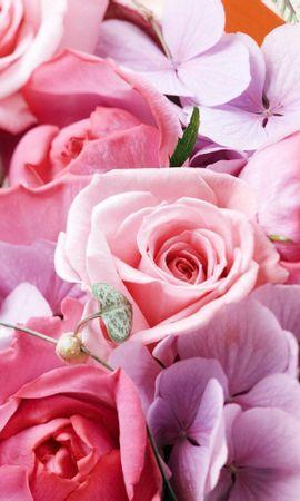 12570 скачать обои Праздники, Растения, Цветы, Розы, Открытки, 8 Марта - заставки и картинки бесплатно