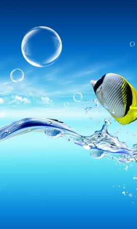 5939 download wallpaper Animals, Water, Fishes screensavers and pictures for free