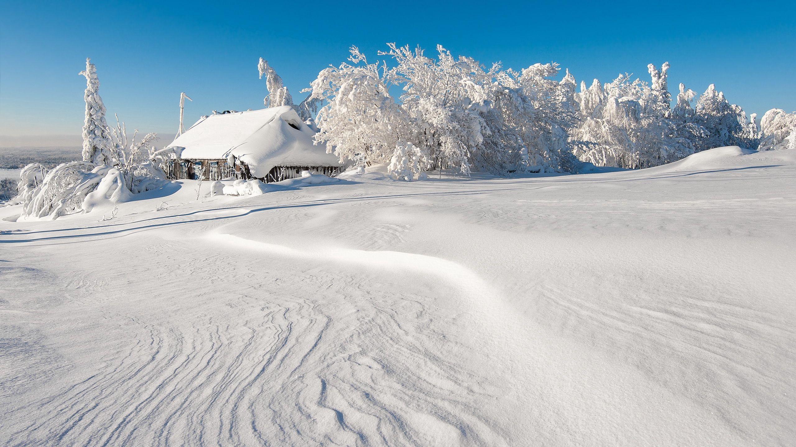 113467 скачать обои Природа, Зима, Здание, Снег, Деревья, Сугробы - заставки и картинки бесплатно