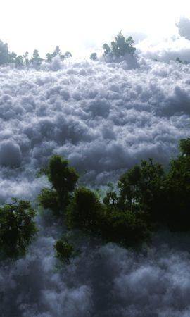 29687 скачать обои Пейзаж, Деревья, Облака - заставки и картинки бесплатно