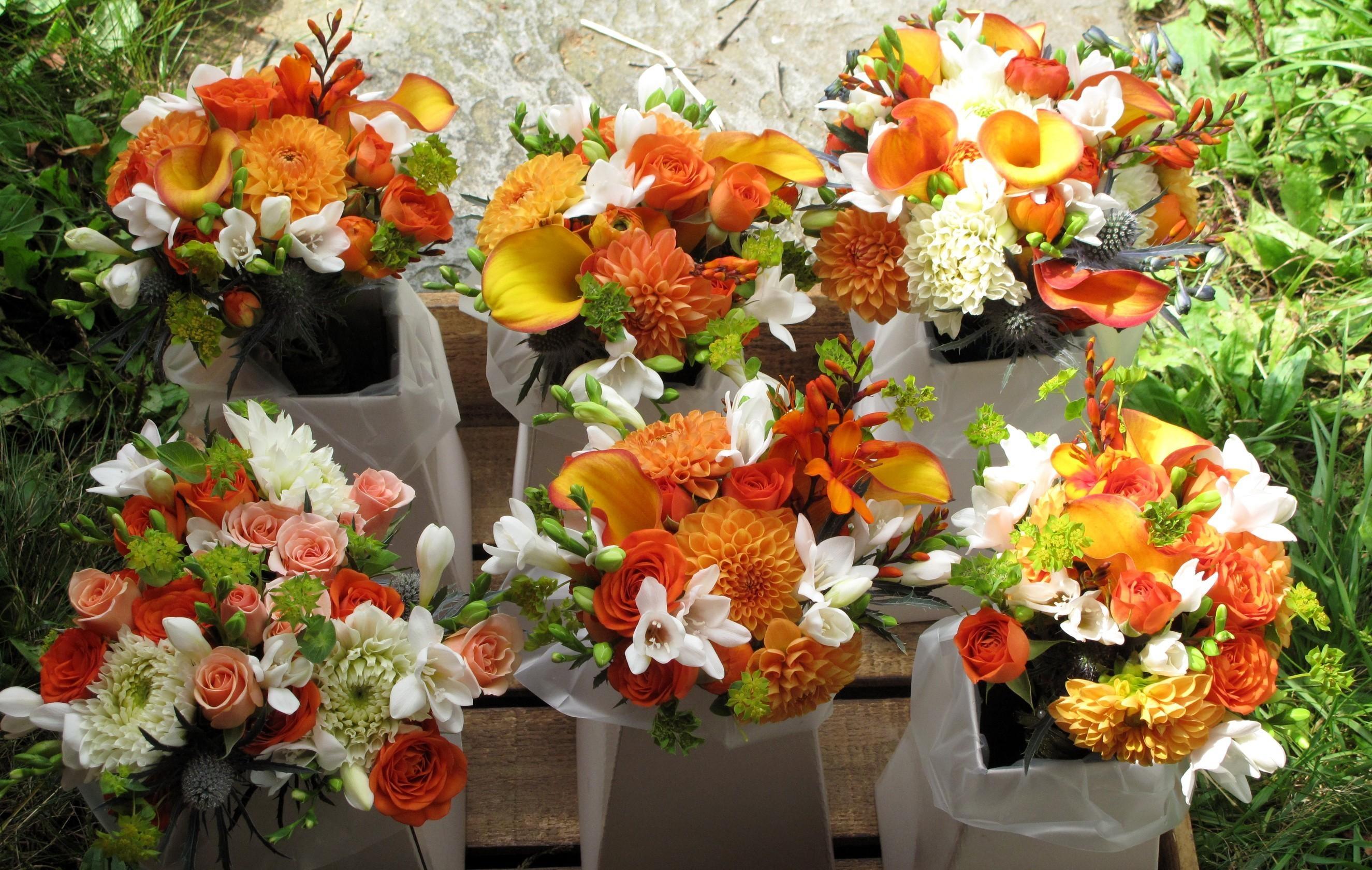 Téléchargez des papiers peints mobile Bouquets, Beaucoup, Parcelle, Dahlias, Freesia, Callas, Roses, Fleurs, Calla gratuitement.