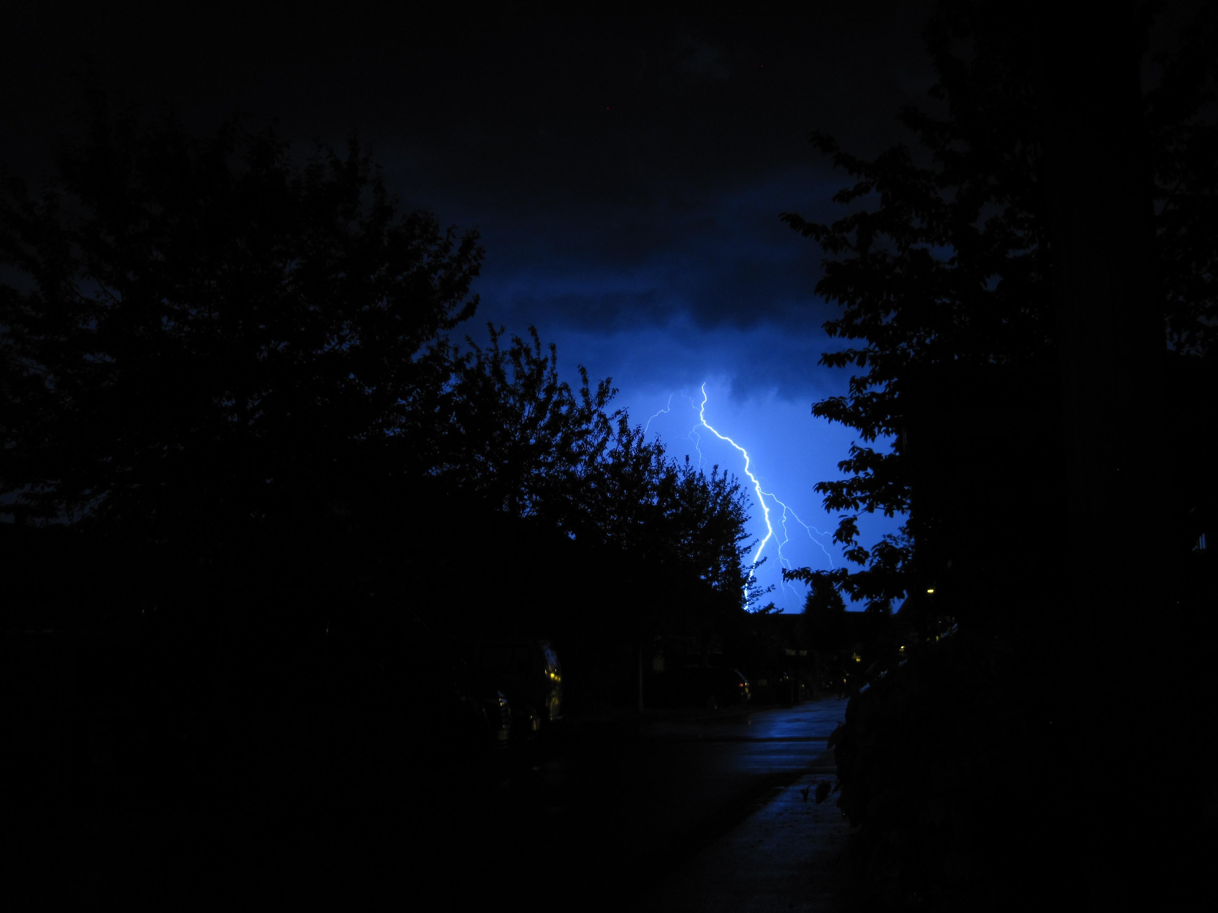 110918 Заставки и Обои Молния на телефон. Скачать Деревья, Небо, Ночь, Темные, Темный, Пасмурно, Молния картинки бесплатно