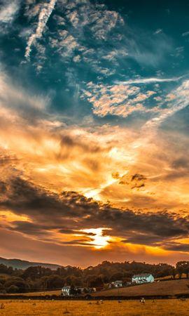 71651 скачать обои Природа, Закат, Небо, Облака, Поле, Деревья, Горизонт - заставки и картинки бесплатно