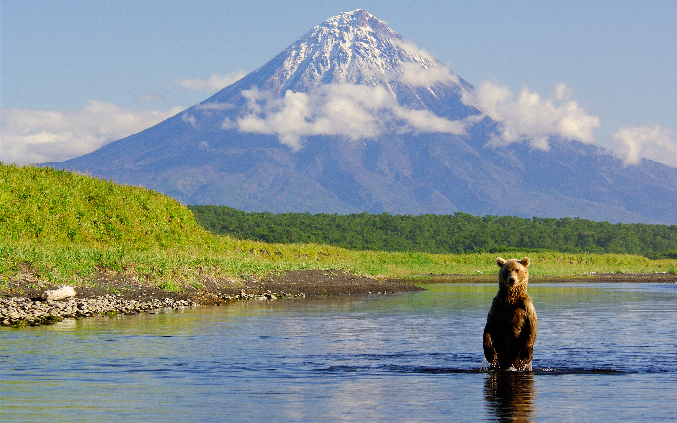 23271 download wallpaper Animals, Landscape, Rivers, Mountains, Bears screensavers and pictures for free