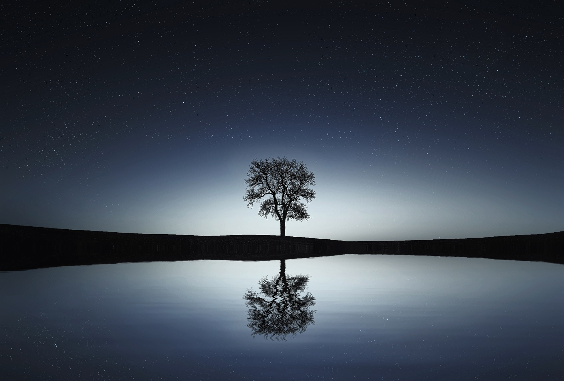 73178 download wallpaper Water, Nature, Night, Reflection, Wood, Tree screensavers and pictures for free