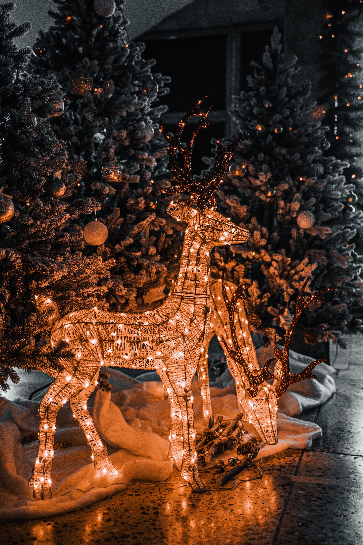 68022 скачать обои Праздники, Олени, Гирлянды, Декорация, Новый Год, Рождество, Праздник, Елки - заставки и картинки бесплатно