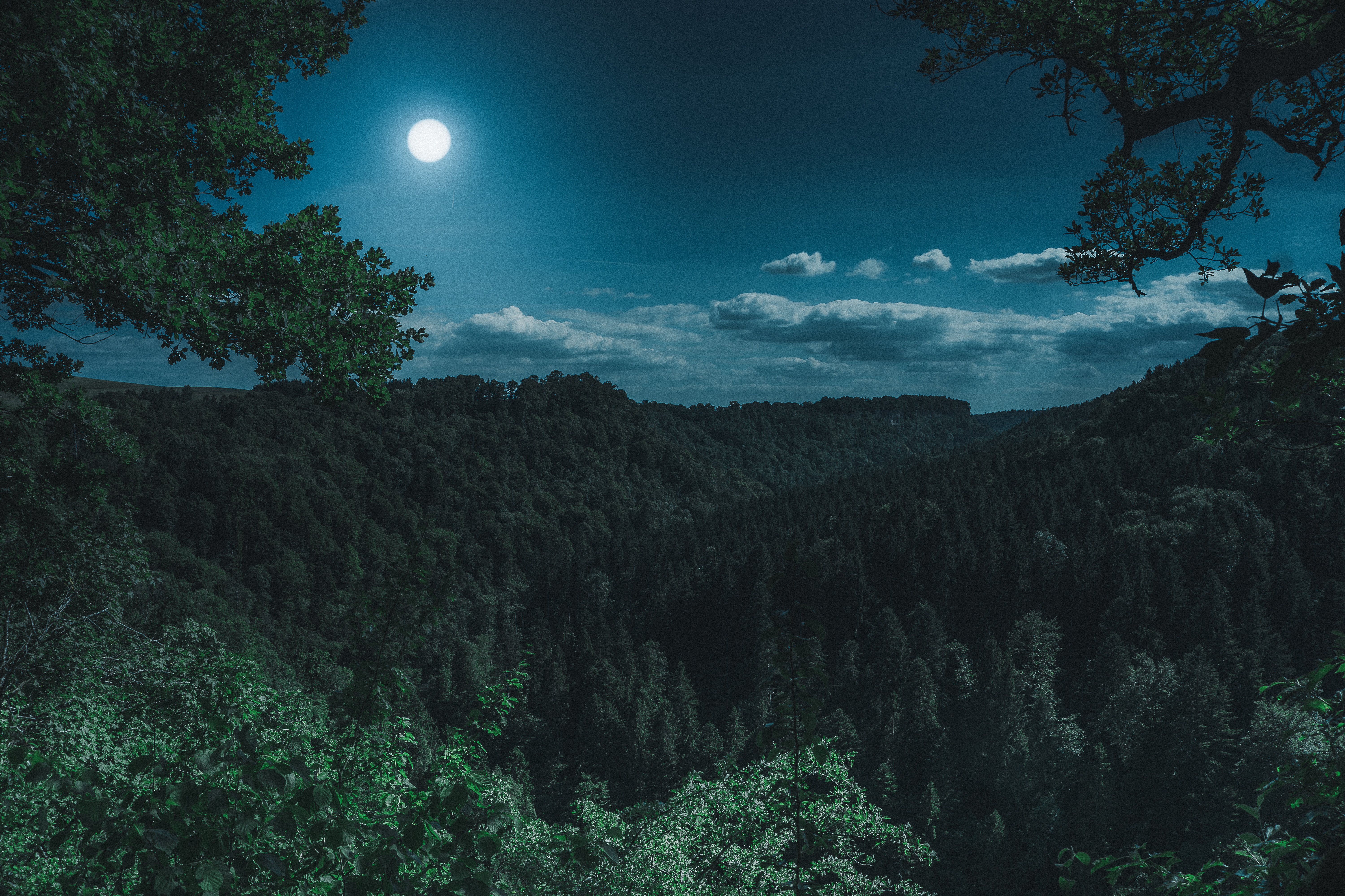 114752 Screensavers and Wallpapers Moon for phone. Download Nature, Forest, Moon, Clouds, Mountains pictures for free