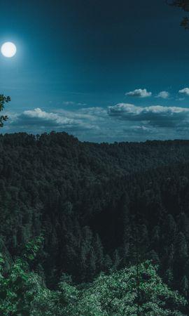114752壁紙のダウンロード自然, 森林, 森, ムーン, 雲, 山脈-スクリーンセーバーと写真を無料で