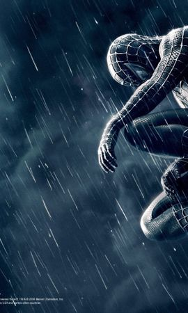 4137 download wallpaper Cinema, Spider Man screensavers and pictures for free