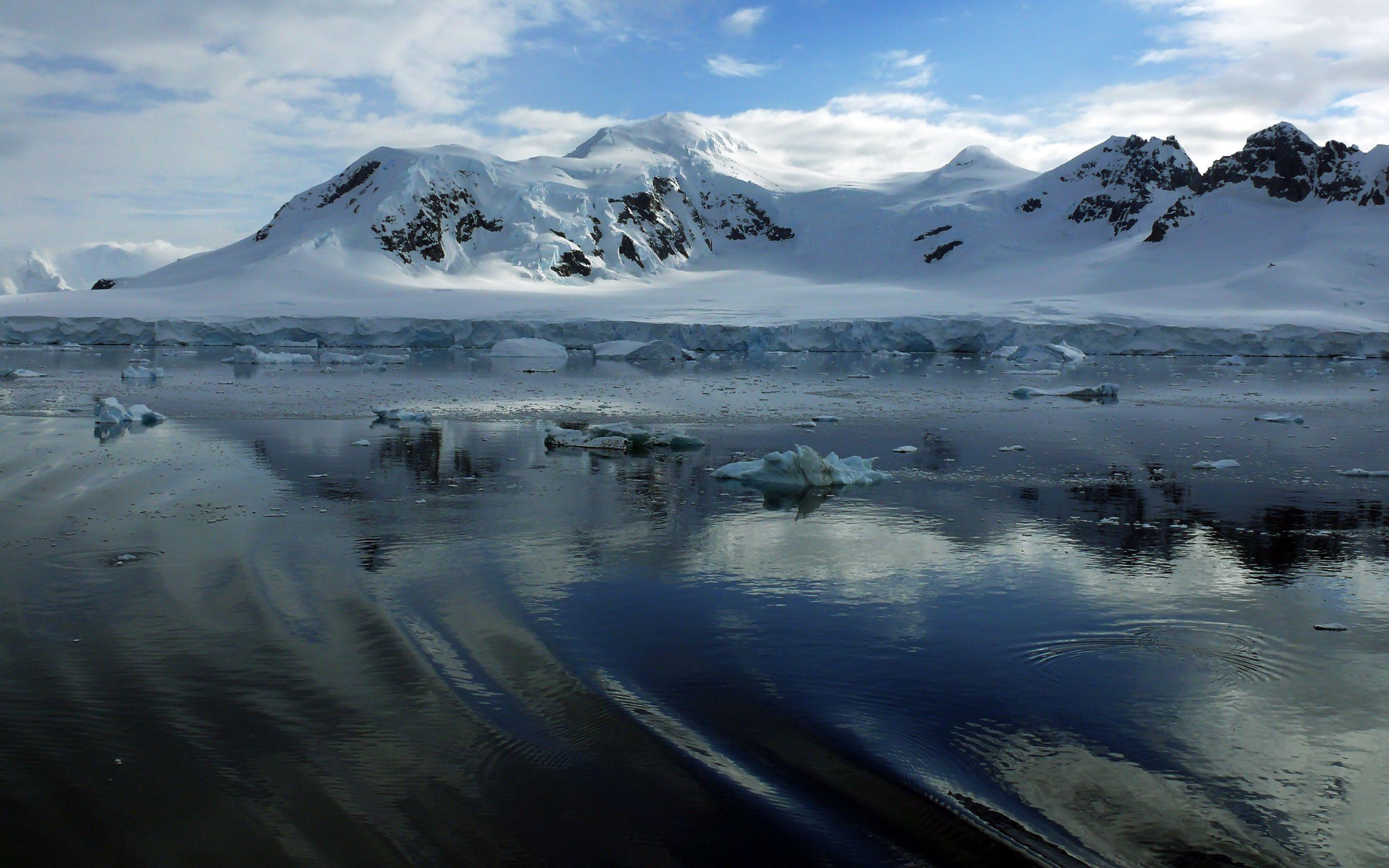 51319 скачать обои Природа, Лед, Антарктида, Холод, Куски, Обломки - заставки и картинки бесплатно